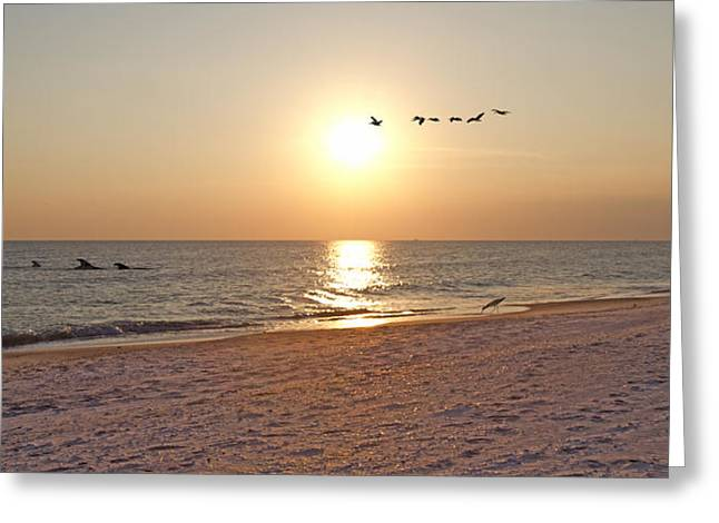 Shackleford Banks Sunset Greeting Card by Betsy Knapp