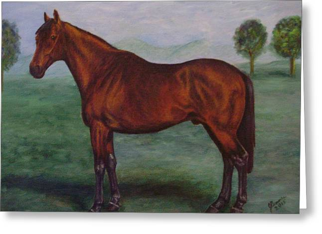 Equestrian Commissions Greeting Cards - Shadeed Champion European Racehorse Greeting Card by Joann Renner