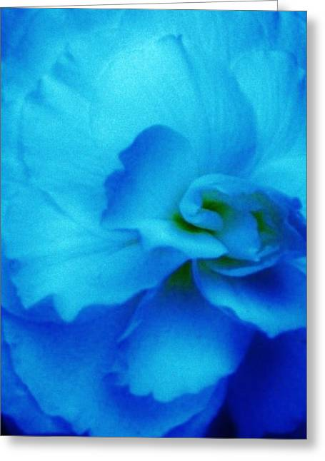 Blue Begonias Greeting Cards - Shades of Blue Greeting Card by  Sharon Ackley
