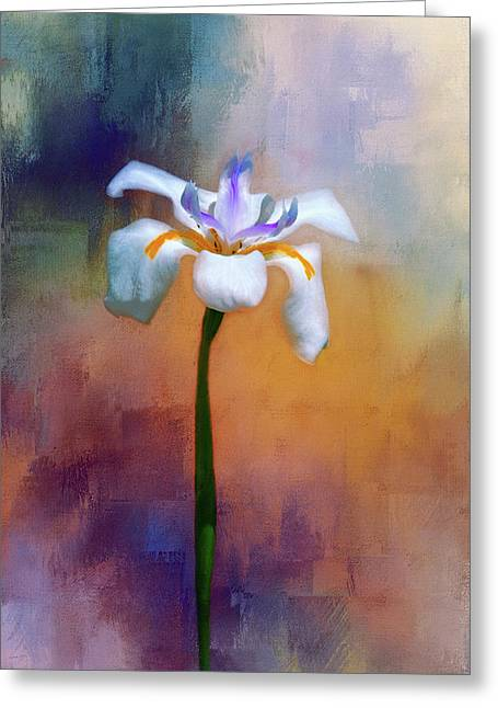 Shades Of Iris Greeting Card by Carolyn Marshall