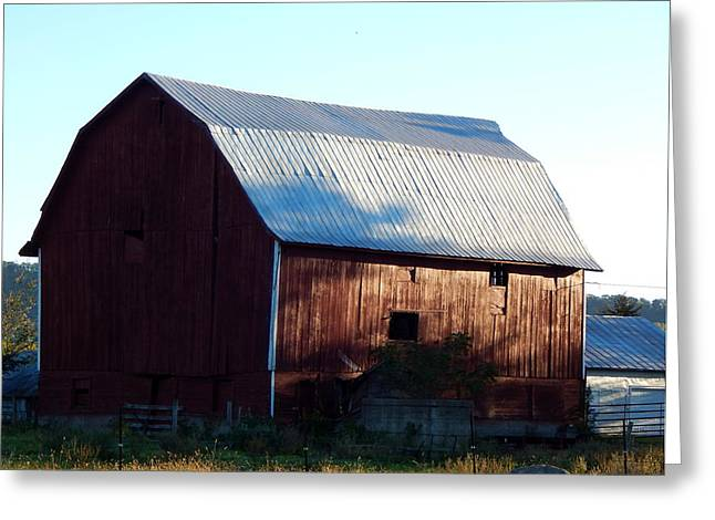 Outbuildings Greeting Cards - Shadow Creatures Fleeing Greeting Card by Wild Thing