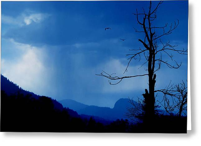 Shadows In The Rain  Greeting Card by John  Poon