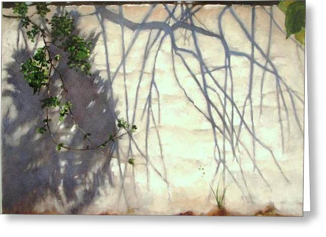 Sunlight Glass Greeting Cards - Shadows Number Five Greeting Card by Podi Lawrence