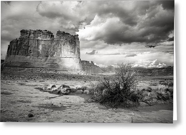 Shadows On The Plain Greeting Card by Jon Glaser