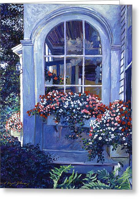 Shady Window Boxes Greeting Card by David Lloyd Glover
