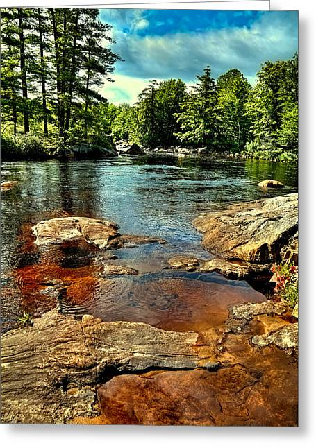 The Trees Greeting Cards - Shallow Pool on the Moose River Greeting Card by David Patterson