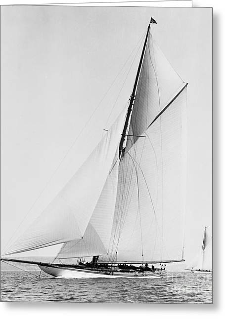 Action Photo Greeting Cards - Shamrock III 1903 BW Greeting Card by Padre Art