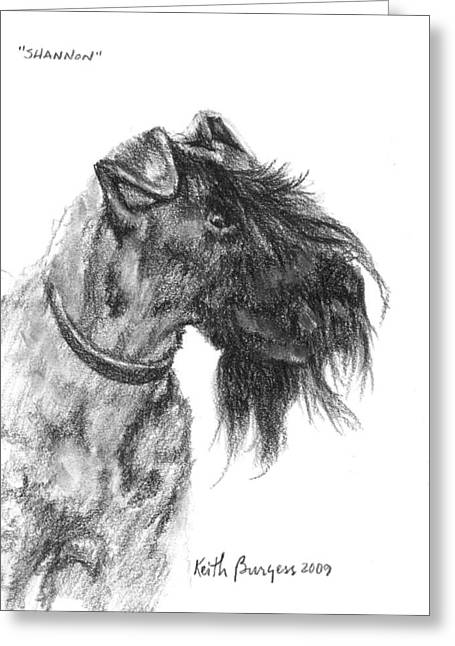 Bred Drawings Greeting Cards - Shannon Greeting Card by Keith Burgess