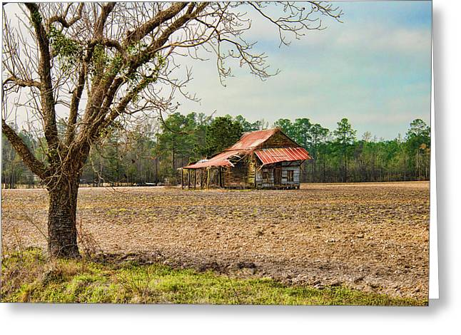 Sharecropper Greeting Cards - Sharecropper Home Greeting Card by Barry Monaco