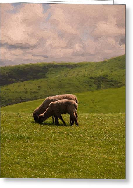 Sonoma County Digital Greeting Cards - Sharing Lunch Greeting Card by John K Woodruff