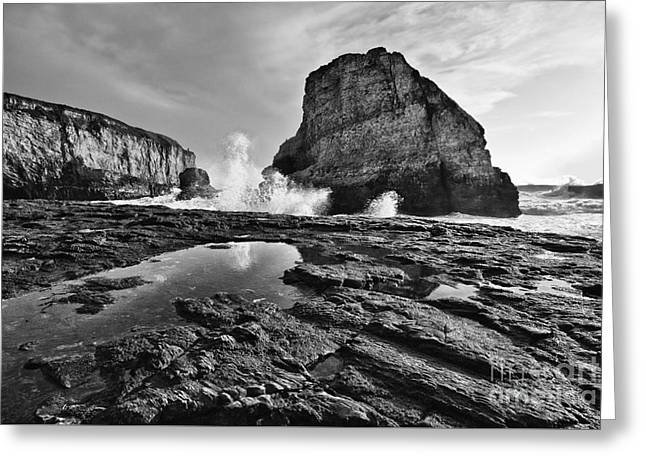 Shark Fin Cove Reflection Greeting Card by Jamie Pham