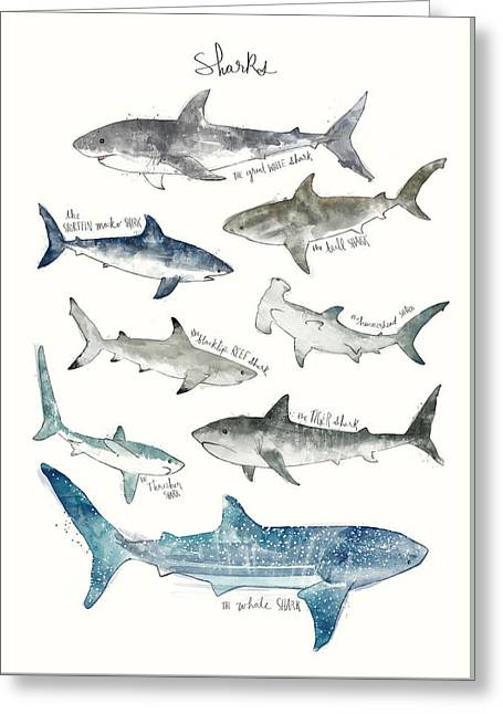 Sharks Greeting Card by Amy Hamilton