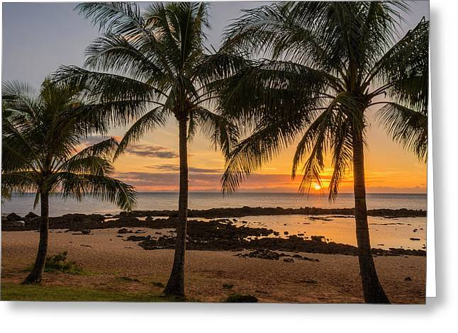 Blue Green Water Photographs Greeting Cards - Sharks Cove Sunset 4 - Oahu Hawaii Greeting Card by Brian Harig