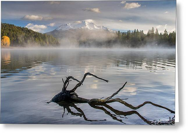 Shasta Mists And Morning 3 Greeting Card by Greg Nyquist