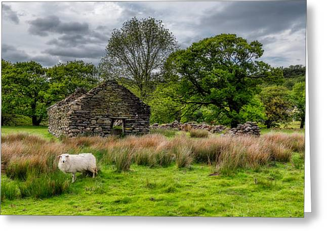 The North Digital Art Greeting Cards - Shauns Place Greeting Card by Adrian Evans