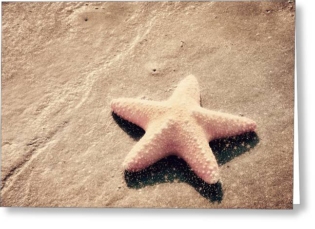 Starfish Greeting Cards - She Dreamed of Becoming a Star Greeting Card by Amy Tyler