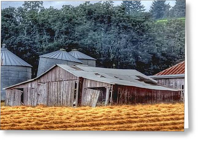 Shed Greeting Cards - Shed and Grain Bins 17238 P Greeting Card by Jerry Sodorff