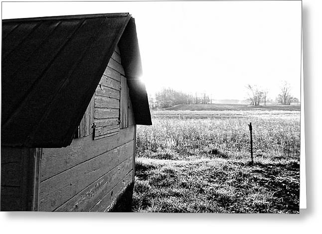 Sheds Greeting Cards - Shed in Morning Sun Greeting Card by Lars Lentz