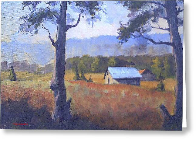 Shed Paintings Greeting Cards - Shed study Greeting Card by Curt Curt