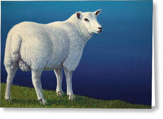 Sheep At The Edge Greeting Card by James W Johnson