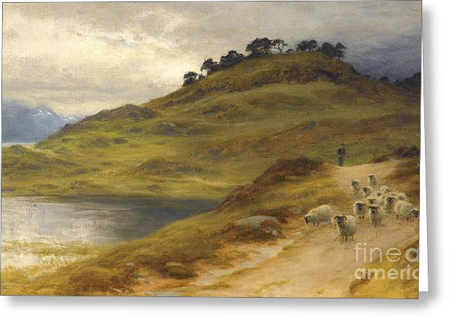 Sheep Droving In A Landscape Greeting Card by Joseph Farquharson
