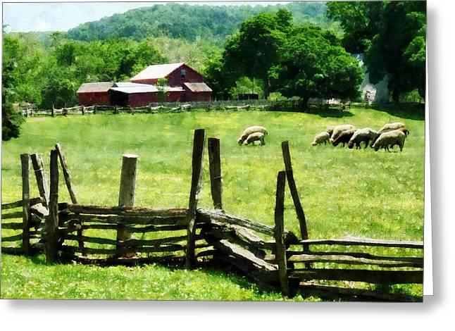 Farms Greeting Cards - Sheep Grazing in Pasture Greeting Card by Susan Savad