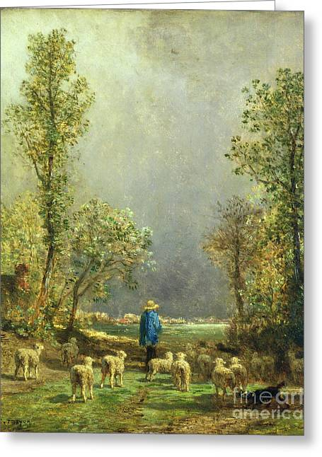 Country Scenes Greeting Cards - Sheep watching a Storm Greeting Card by Constant-Emile Troyon