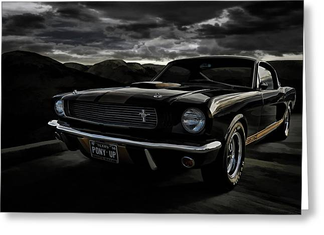 Shelby Greeting Cards - Shelby GT350H Rent-A-Racer Greeting Card by Douglas Pittman