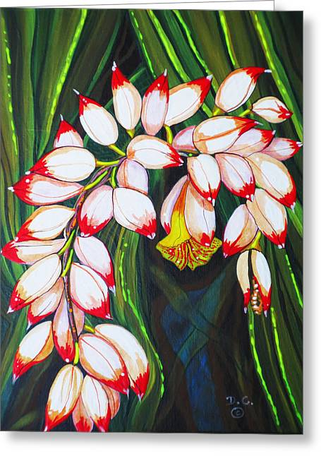 Debbie Chamberlin Greeting Cards - Shell Ginger Greeting Card by Debbie Chamberlin
