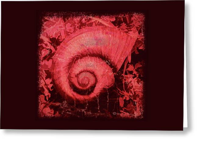 Shell Series 1 Greeting Card by Marvin Spates