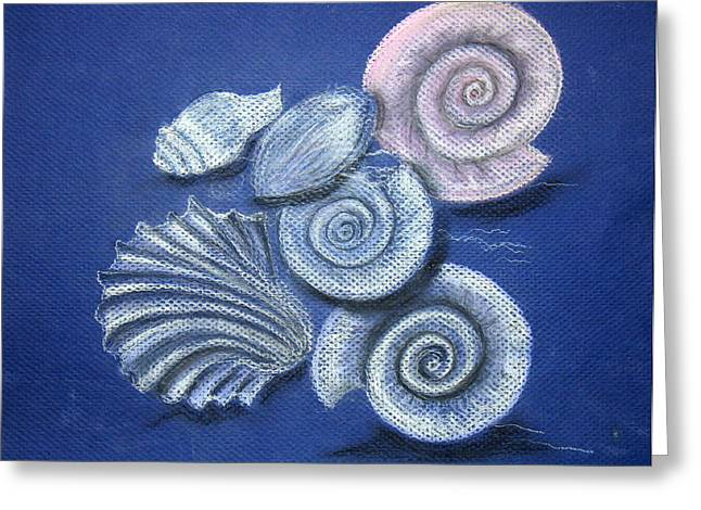 Snorkel Greeting Cards - Shells Greeting Card by Barbara Teller