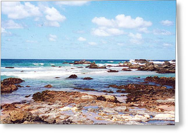 Kim Photographs Greeting Cards - Shelly Beach Rock Pools Greeting Card by Kim Magee  Photography