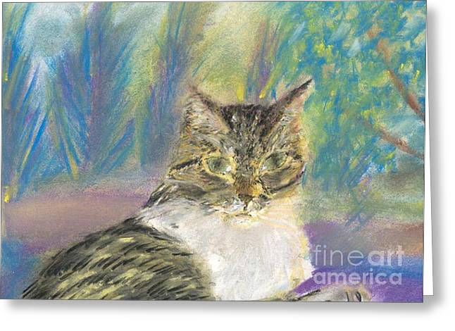 Shines Pastels Greeting Cards - Shelly Greeting Card by Sunshine Max