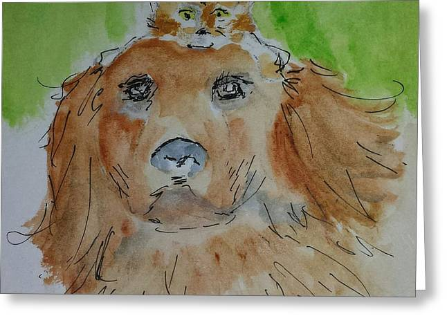 Shelter Friends Greeting Card by Kathy Sweeney