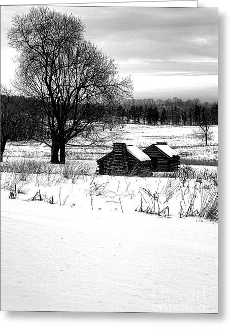 Shelters In The Snow Greeting Card by Olivier Le Queinec