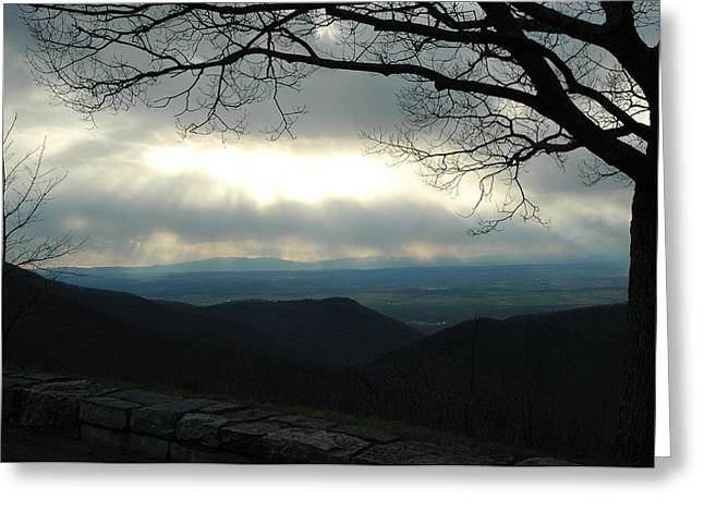Best Sellers -  - Gloaming Greeting Cards - Shenandoah Gloaming Greeting Card by Jane Jansen van Rensburg