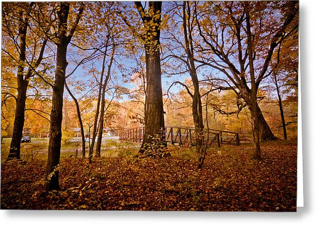 Shenango Paradise Greeting Card by Linda Unger