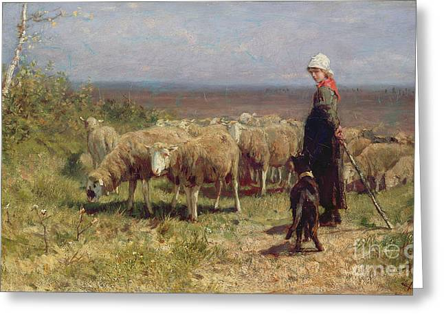Rural Landscapes Paintings Greeting Cards - Shepherdess Greeting Card by Anton Mauve