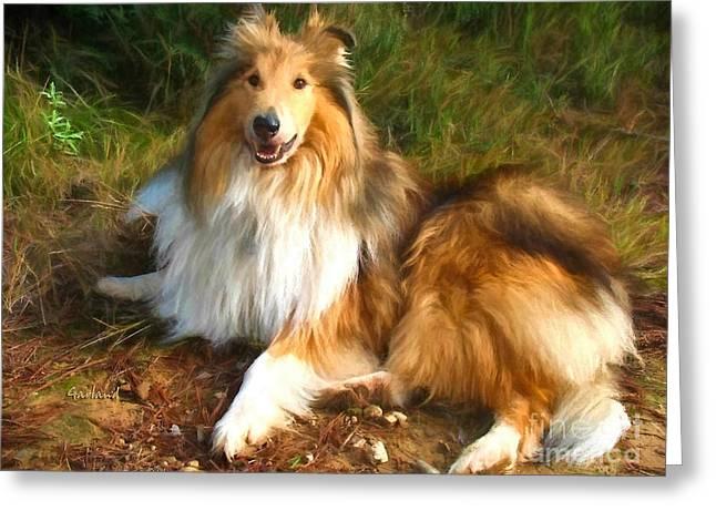 Black Top Greeting Cards - Shetland Dog Greeting Card by Garland Johnson