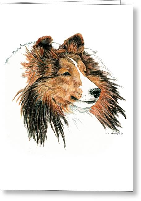 Shetland Sheepdog, Sheltie Sable Greeting Card by Kathleen Sepulveda