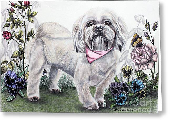 Puppies Drawings Greeting Cards - Shih Tzu in Color Greeting Card by Lena Auxier
