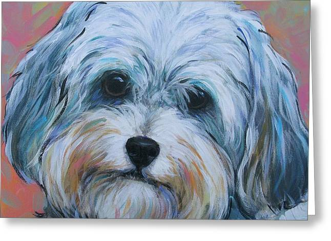 Shih Tzu Greeting Card by Vickie Fears