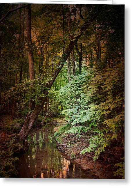 Summer Scene Greeting Cards - Shiloh Stream 2 Greeting Card by Jai Johnson