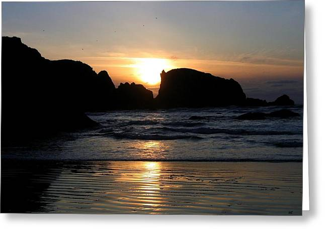 Shimmering Sands Sunset Greeting Card by Will Borden