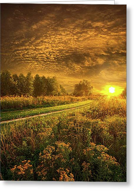 Shine Down On Another Day Greeting Card by Phil Koch