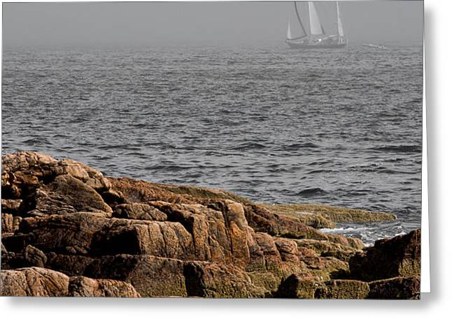 Ships Harbor in Maine Greeting Card by James Dricker
