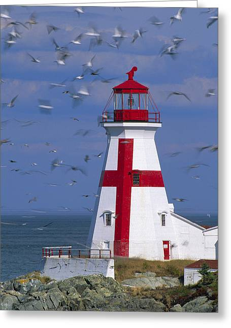 Quoddy Greeting Cards - Ships warning. Greeting Card by Eggers   Photography