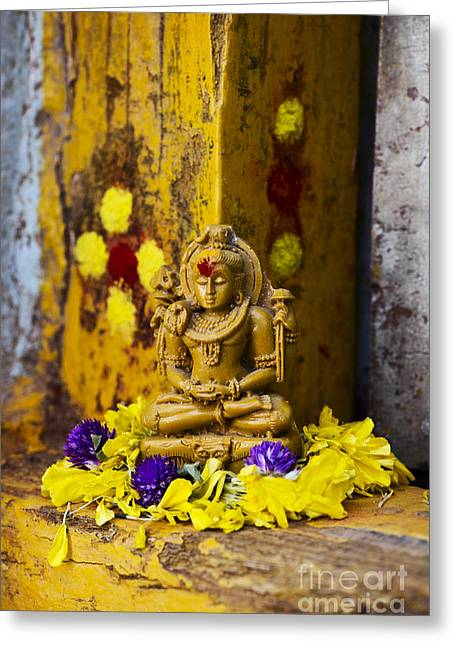 Devoted Greeting Cards - Shiva Devotion Greeting Card by Tim Gainey