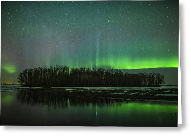 Edmonton Photographer Greeting Cards - Shooting Star Greeting Card by Mike Isaak