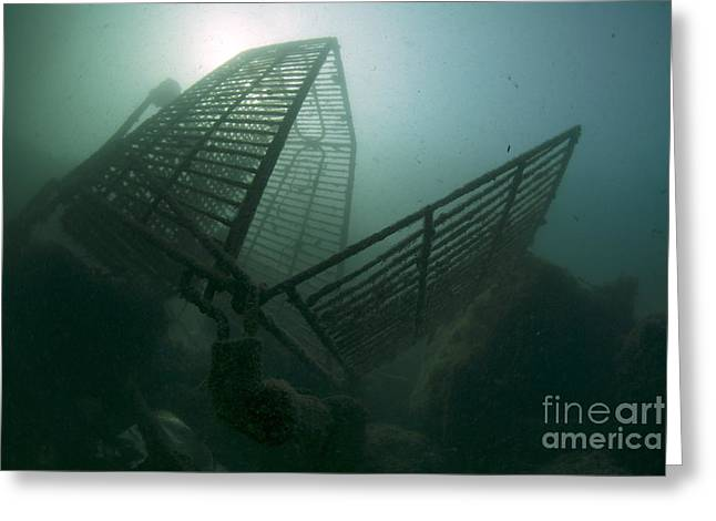 Shopping Cart Greeting Cards - Shopping Cart Dumped In A Harbor Greeting Card by Angel Fitor
